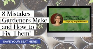 8 Garden Mistakes & How to Fix Them