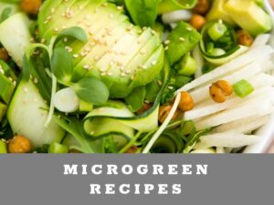 Microgreen Recipe Ideas