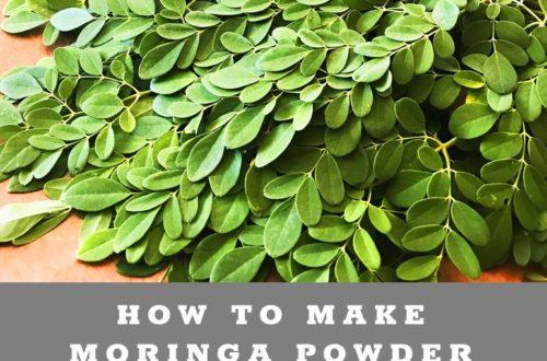 How to dehydrate Moringa Powder